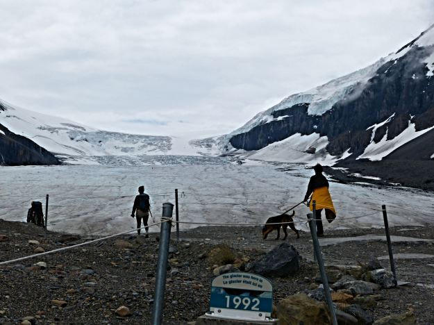 The Columbia Ice Field.