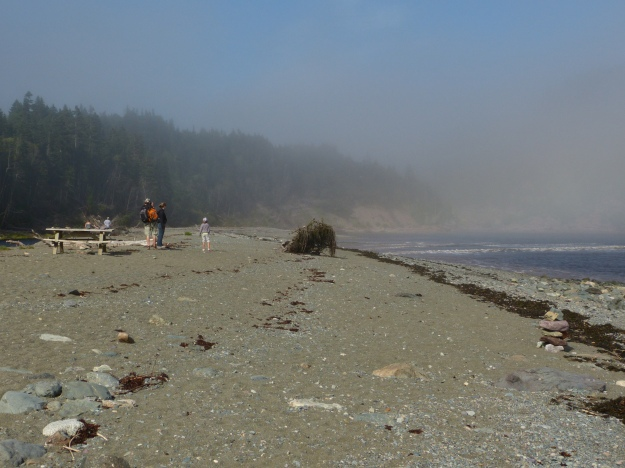 Note the fog even though it is late afternoon at Herring Cove on the Bay of Fundy.