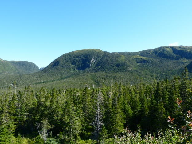 The TableLands of Gros Morne National Park. A geologist's dream!