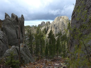 A view from The Needles Highway, Custer State Park, South Dakota